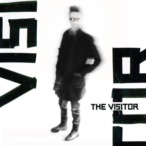 The Visitor