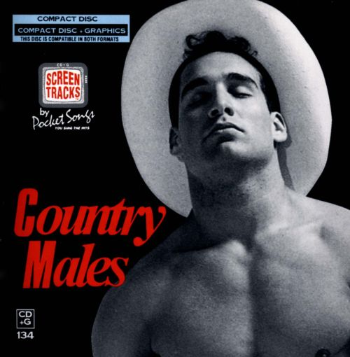 Sing The Hits Of Country Males