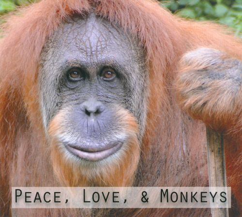 Peace, Love & Monkeys
