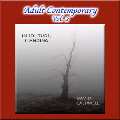 Adult Contemporary, Vol. 2: In Solitude, Standing