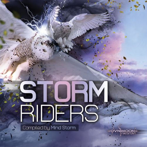 Storm Riders by Mind Storm