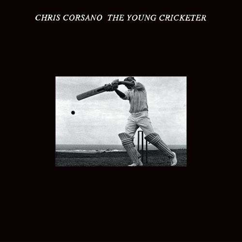 The Young Cricketer
