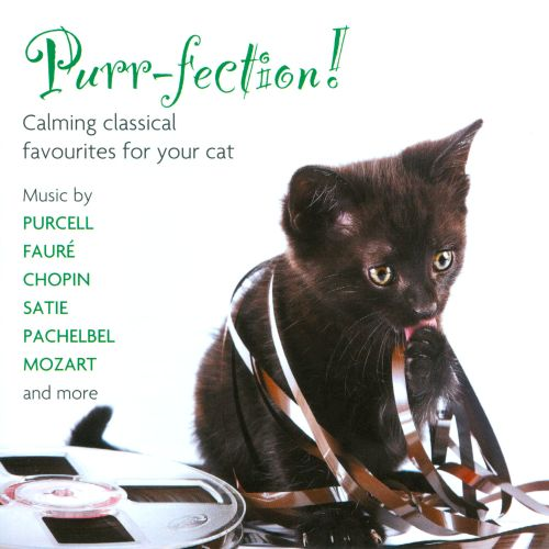 Purr-fection! Calming classical favourites for your cat