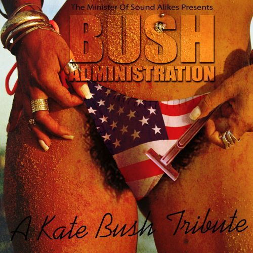 Bush Administration: A Kate Bush Tribute