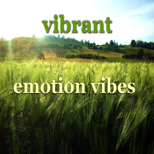 Emotion Vibes (Vocal House Mix)
