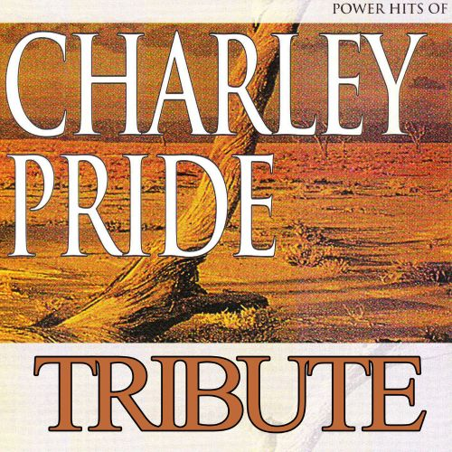 Dubble Trubble Tribute To Charley Pride: Power Hits