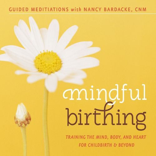 Mindful Birthing: Training the Mind