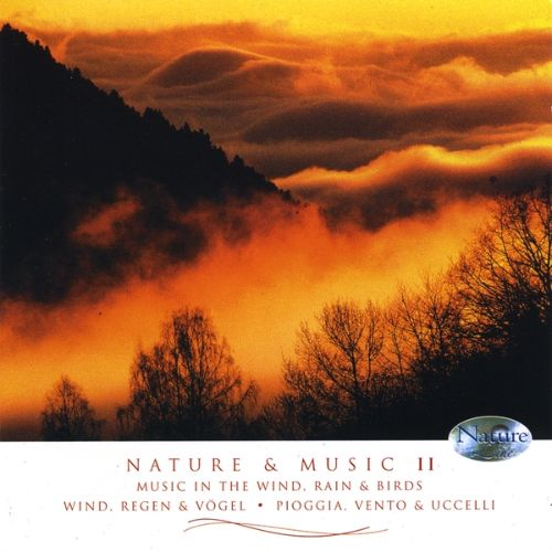 Nature & Music, Vol. 2: Music In Wind Rain & Birds