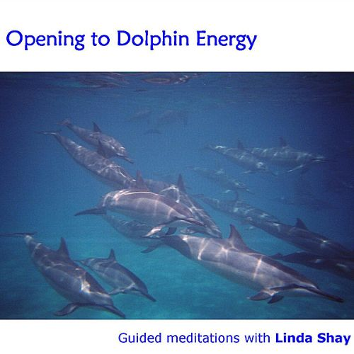 Opening to Dolphin Energy