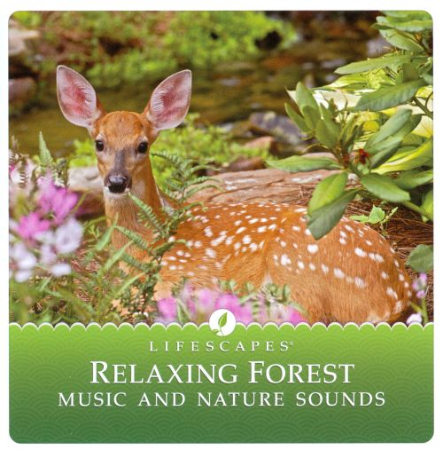 Relaxing Forest