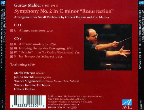 Mahler 2: Arrangement for Small Orchestra