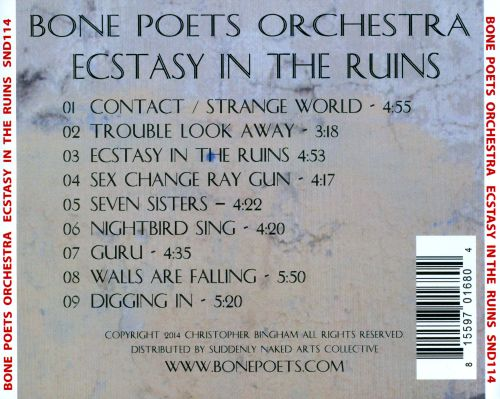 Ecstasy In the Ruins