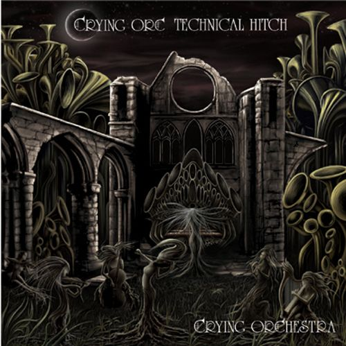 Crying Orchestra Technkcal Hitch