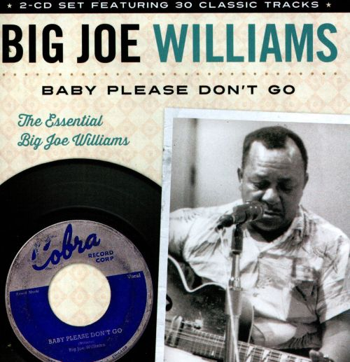 Baby Please Don't Go: The Essential Big Joe Williams