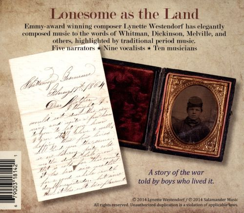Lonesome as the Land: The Civil War through the diaries of boy soldiers