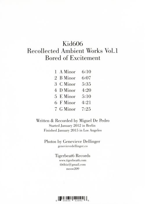 Recollected Ambient Works, Vol. 1: Bored of Excitement