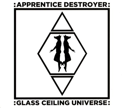 Glass Ceiling Universe ...