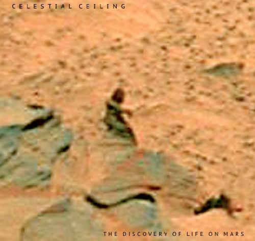 The Discovery of Life on Mars