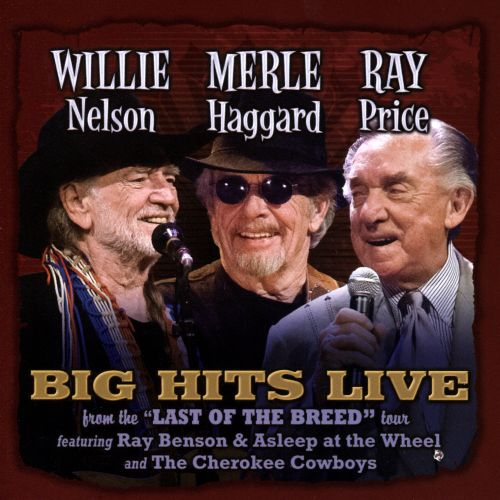 Willie Merlie & Ray: Big Hits Live From the