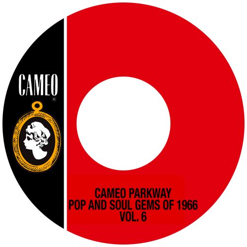 Cameo Parkway Pop and Soul Gems of 1966, Vol. 6