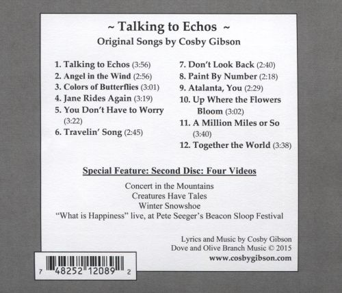 Talking to Echoes