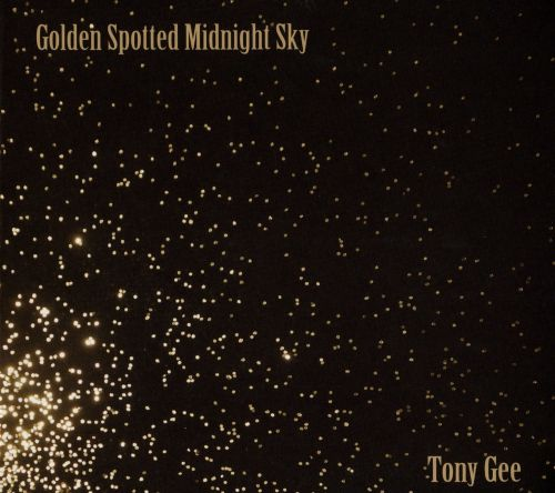 Golden Spotted Midnight Sky