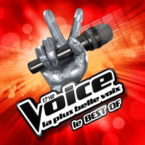 Voice La Plus Belle Voix: Le Best Of