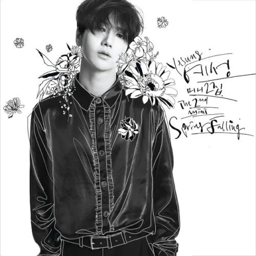 Spring Falling: The 2nd Mini Album