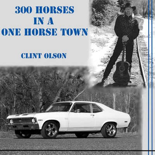300 Horses in a One Horse Town